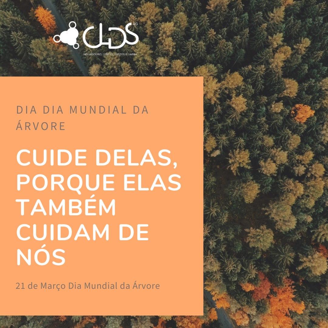 CLDS DIA DA ARVORE